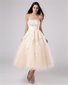 Show details for Champagne Tea Length Strapless Tulle Wedding Dress With Lace Overlay