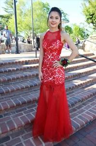 Elegant Sheer Sleeveless Lace Bodice Drop Waist Mermaid Formal Dress