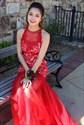 Show details for Elegant Sheer Sleeveless Lace Bodice Drop Waist Mermaid Formal Dress