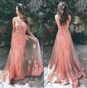 Illusion Sleeveless Lace Applique Tulle Evening Dress With Open Back
