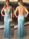 Elegant Deep V-Neck Lace Sleeveless Long Prom Dress With Sheer Back